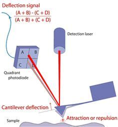 Atomic Force Microscopy - Nanoscience Instruments